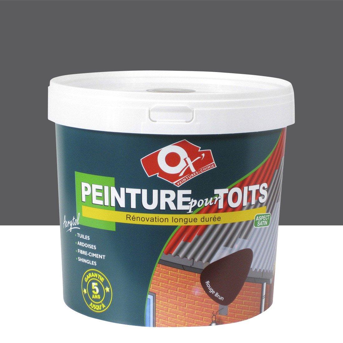 peinture pour toiture