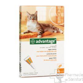 advantage anti puce chat