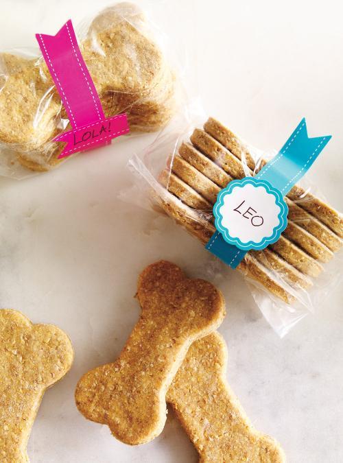 biscuit chien