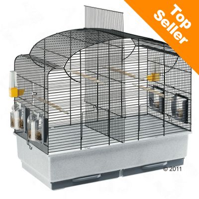 cage a perruche