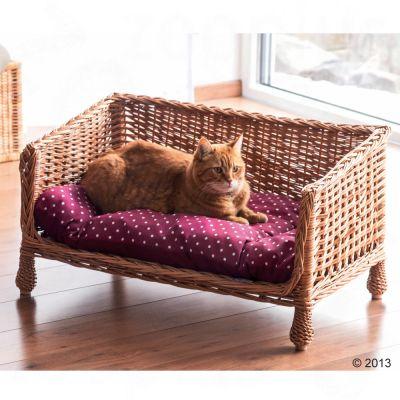 canapé pour chat