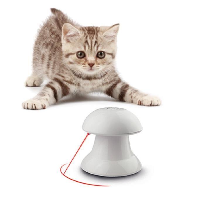 chat electronique