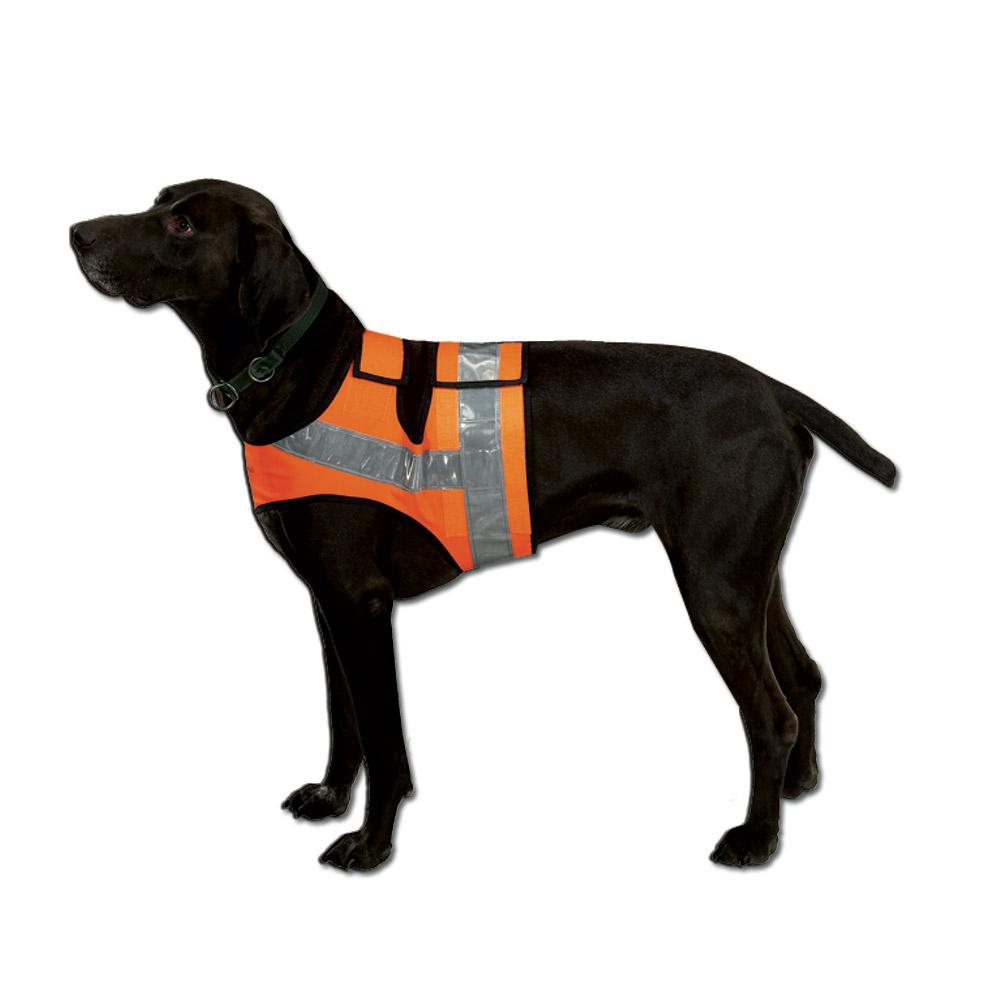 gilet fluo chien